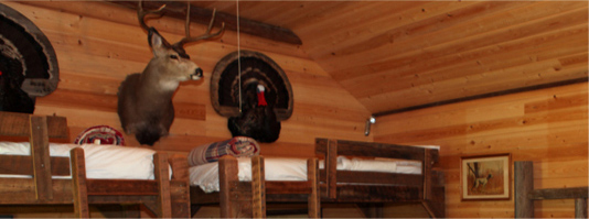 Bunk Beds in Lodge